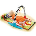 fisher-price-gym mat stimuli and toys